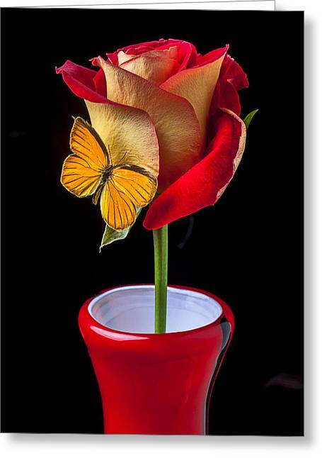 Lowered Greeting Cards - Rose with butterfly in red vase Greeting Card by Garry Gay