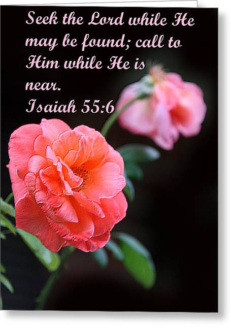 Isaiah Greeting Cards - Rose with Echo Is. 55v6 Greeting Card by Linda Phelps