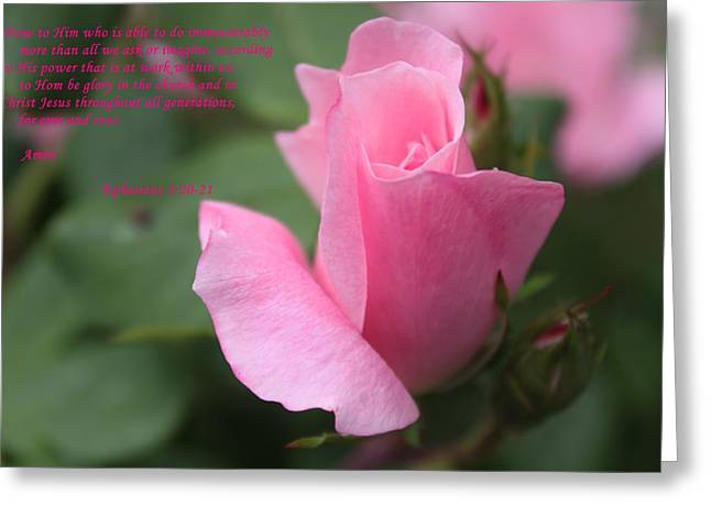 Rose With Scripture Greeting Card by Carolyn Ricks