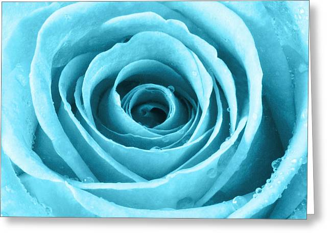 Fine Dining Prints Greeting Cards - Rose with Water Droplets - Turquoise Greeting Card by Natalie Kinnear