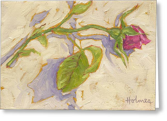 Apology Greeting Cards - Rosebud Greeting Card by Catherine Martha Holmes