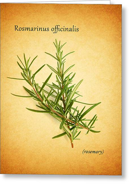Ingredients Greeting Cards - Rosemary Greeting Card by Mark Rogan