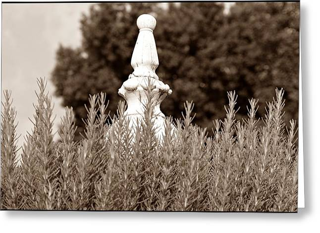 Garden Statuary Greeting Cards - Rosemary Sepia Greeting Card by Sharon Popek