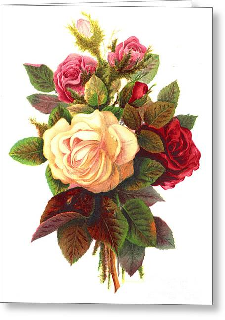 Roses 1874 Greeting Card by Padre Art