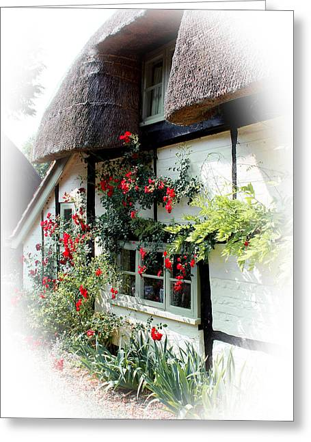 Terri Waters Greeting Cards - Roses Around The Window Greeting Card by Terri  Waters
