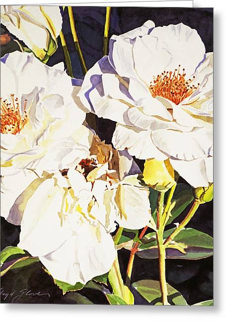 Rose Bushes Greeting Cards - Roses Blanc Greeting Card by David Lloyd Glover