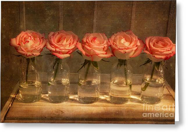 Bottle Of Milk Greeting Cards - Roses in a Row Greeting Card by Ann Garrett