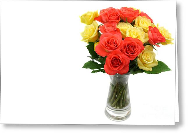 Yellow Flower Scent Greeting Cards - Roses in a vase isolated on white background Greeting Card by Simon Bratt Photography LRPS
