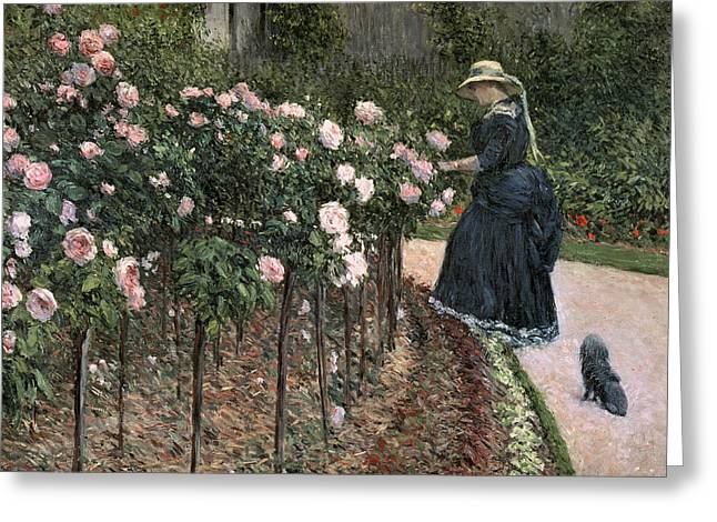 Border Greeting Cards - Roses in the Garden at Petit Gennevilliers Greeting Card by Gustave Caillebotte