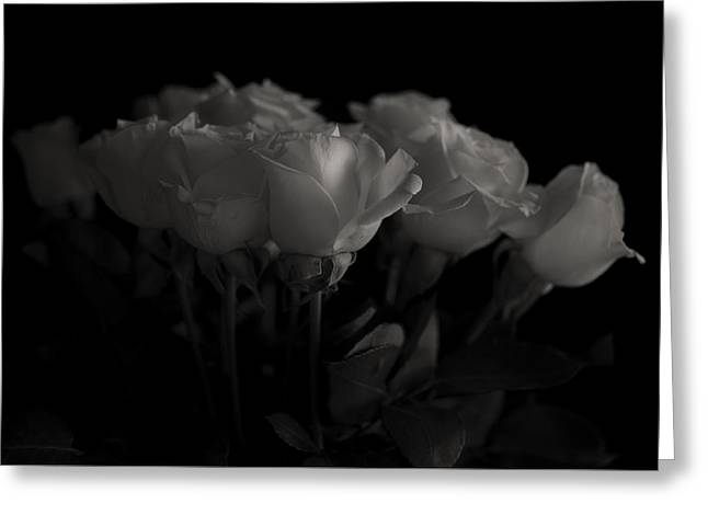 Roses Greeting Card by Mario Celzner