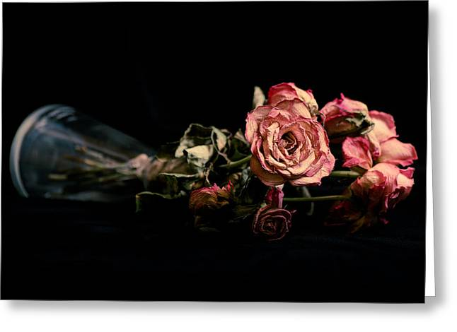 Kjona Greeting Cards - Roses Greeting Card by Mirra Photography