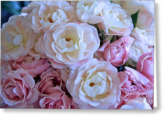 Dressing Room Photographs Greeting Cards - Roses on the Veranda Greeting Card by Carol Groenen