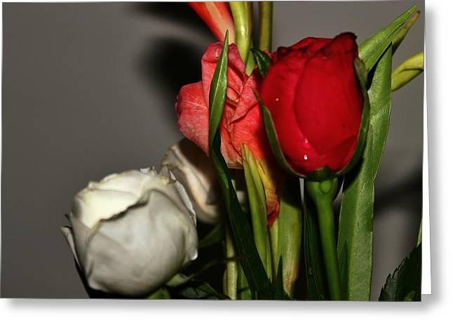 Dalrymple Greeting Cards - Roses Greeting Card by Pranav Arora