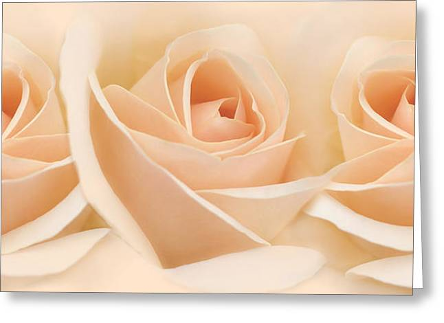 Light Peach Greeting Cards - Roses Three Peach Floral Greeting Card by Jennie Marie Schell