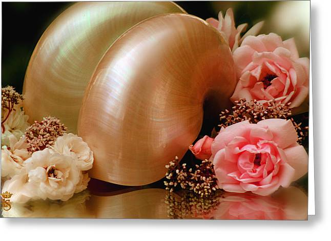 Li Van Saathoff Greeting Cards - Roses with sea shell Greeting Card by Li   van Saathoff
