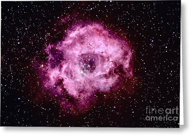 Monoceros Greeting Cards - Rosette Nebula In Monoceros Greeting Card by John Chumack