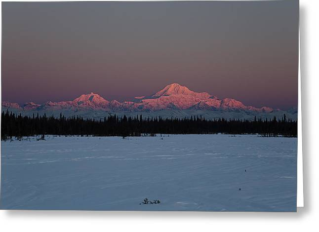 Winterscape Greeting Cards - Rosewood Greeting Card by Ed Boudreau