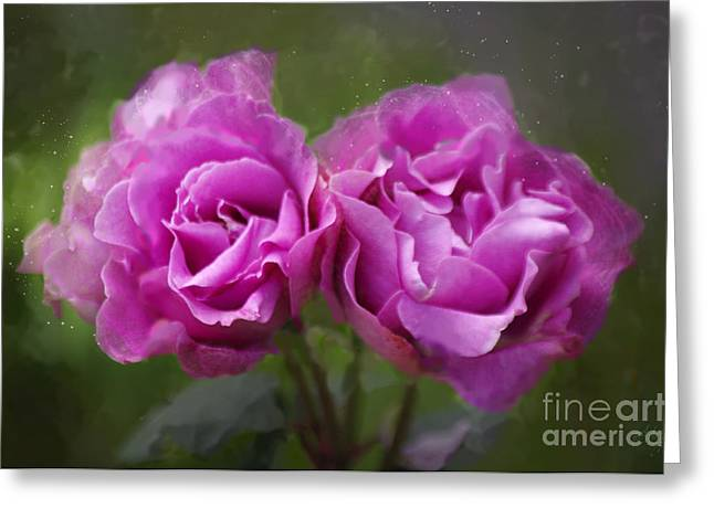Rose Petals Greeting Cards - Rosey Twins Greeting Card by Adria Trail