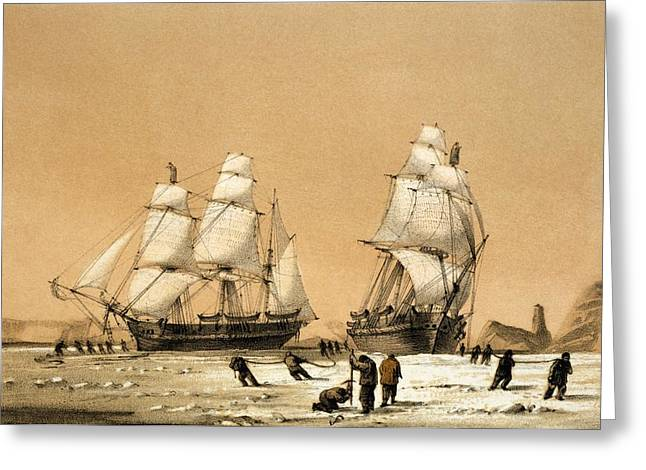 Enterprise Greeting Cards - Ross Arctic search expedition, 1848-9 Greeting Card by Science Photo Library