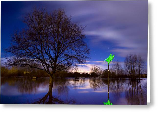 Bird On Tree Greeting Cards - Ross-on-Wye flooded Greeting Card by Angel  Tarantella