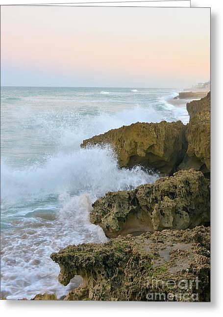 Martin County Greeting Cards - Ross Witham Beach Hutchinson Island Martin County Florida Greeting Card by Olga Hamilton