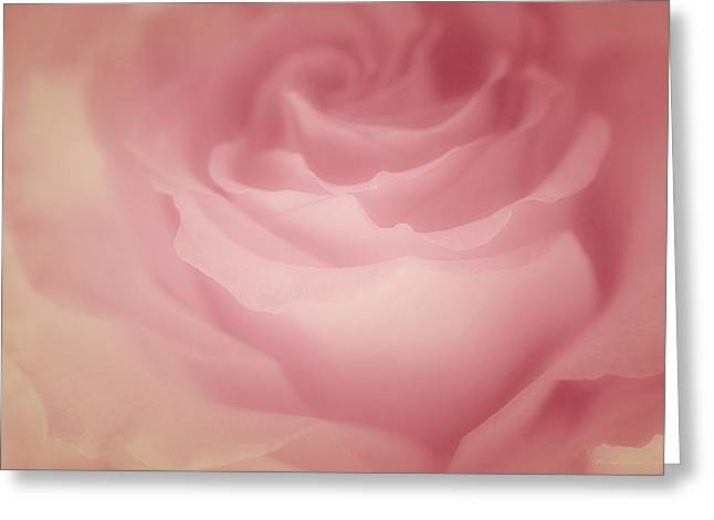 Masterful Greeting Cards - Rosy Loveliness Greeting Card by  The Art Of Marilyn Ridoutt-Greene