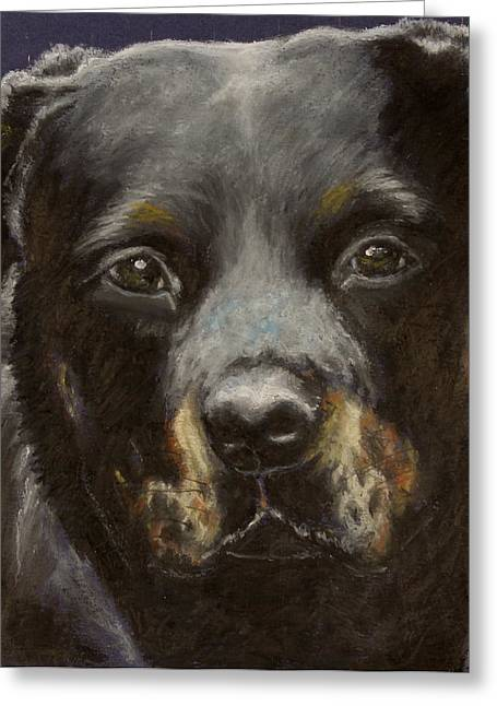 Adult Pastels Greeting Cards - Rottie Greeting Card by Jeanne Fischer