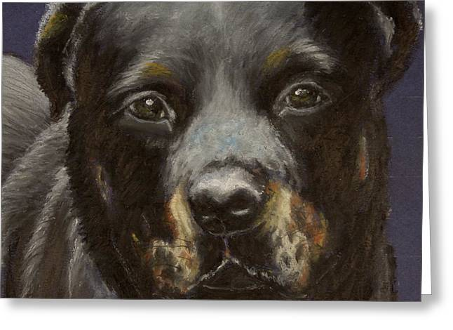 Guard Dog Pastels Greeting Cards - Rottie Greeting Card by Jeanne Fischer