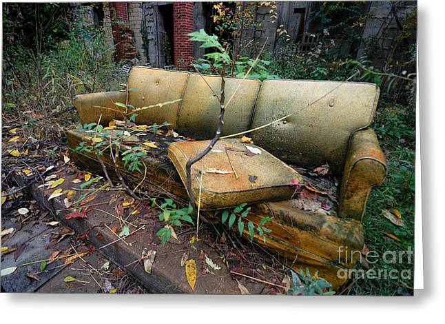 Filth Greeting Cards - Rotting Yellow Sofa Greeting Card by Amy Cicconi