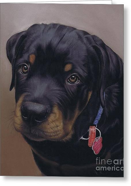 Rottweiler Dog Greeting Card by Karie-Ann Cooper