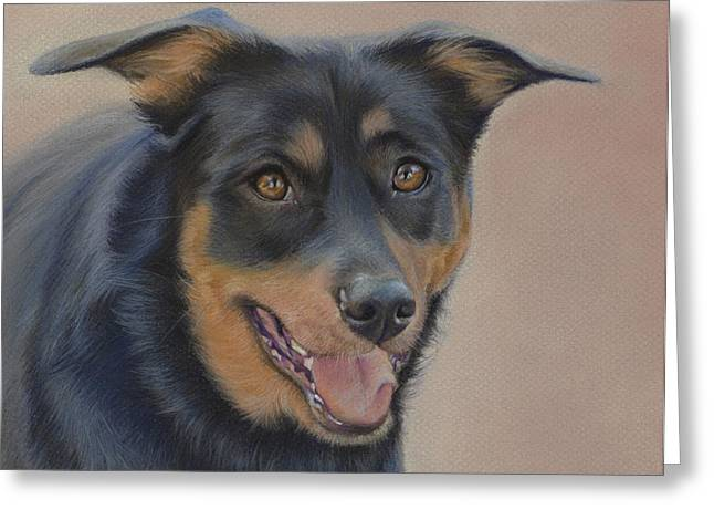 Shiny Pastels Greeting Cards - Rottweiler - Drawing Greeting Card by Natasha Denger