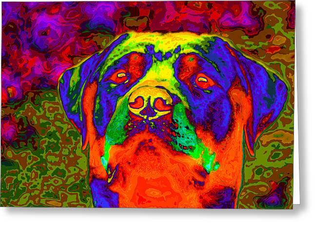 Rottweiler Portrait Pop Art Greeting Card by Eti Reid