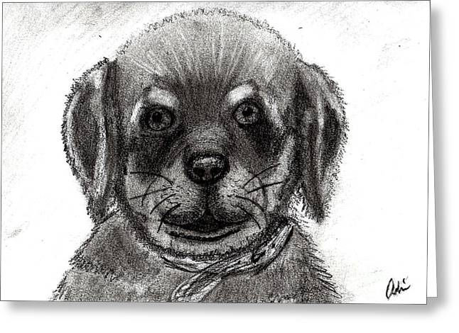 Puppies Drawings Greeting Cards - Rottweiler Pup Greeting Card by Minding My  Visions by Adri and Ray