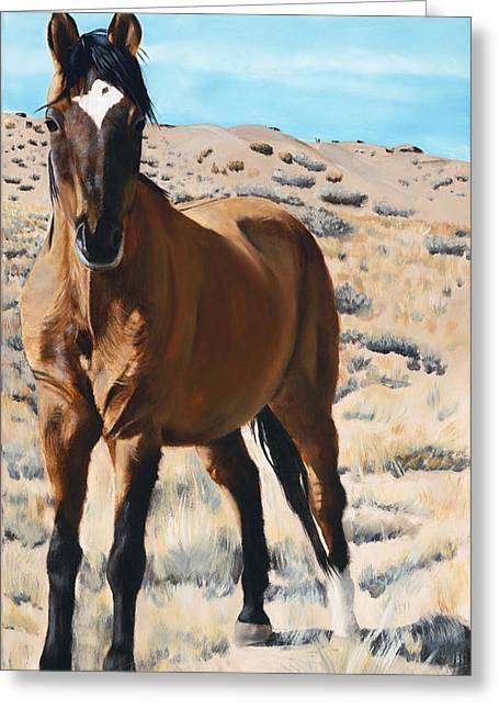 Quarter Horse Greeting Cards - Rough and Ready Greeting Card by Jack Atkins