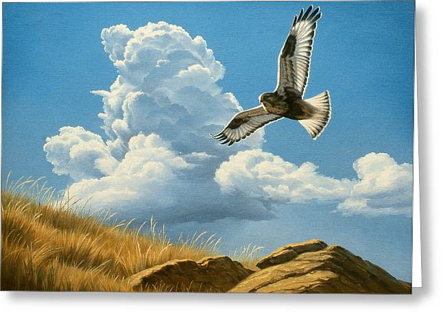 Cloudscapes Greeting Cards - Rough-legged Hawk Greeting Card by Paul Krapf