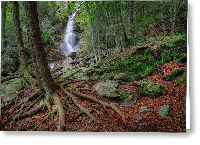 The Berkshires Greeting Cards - Rough Terrain Greeting Card by Bill  Wakeley