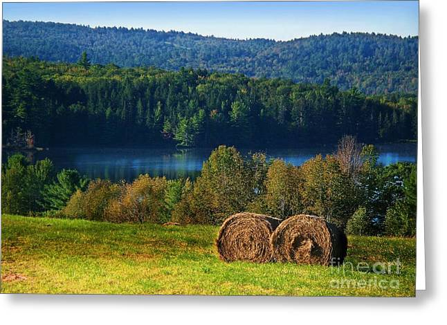 Rural Maine Roads Greeting Cards - Round Bales Greeting Card by Joy Nichols