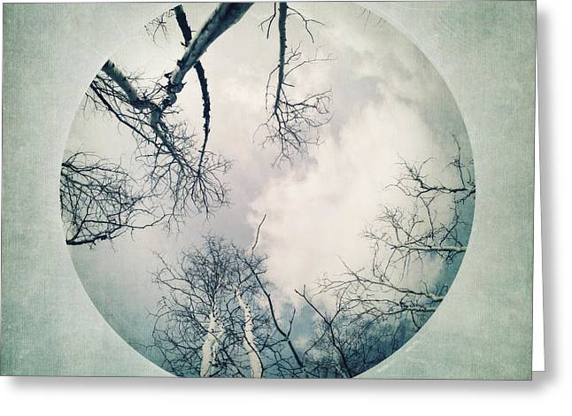 Vignette Greeting Cards - round treetops I Greeting Card by Priska Wettstein