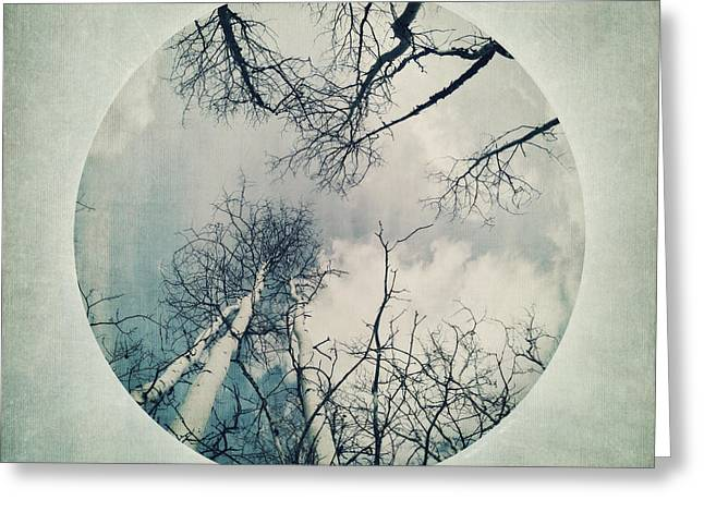 Serie Greeting Cards - round treetops II Greeting Card by Priska Wettstein