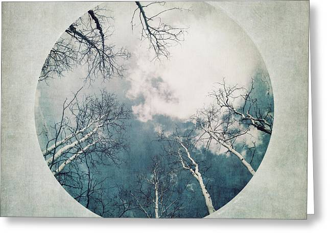 Dusty Blue Greeting Cards - round treetops III Greeting Card by Priska Wettstein
