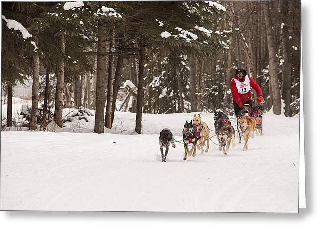 Fur Rendezvous Greeting Cards - Rounding a Corner Greeting Card by Tim Grams