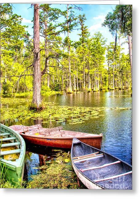 Cypress Tree Digital Art Greeting Cards - Row Boats in a Cypress Swamp Greeting Card by Dan Carmichael