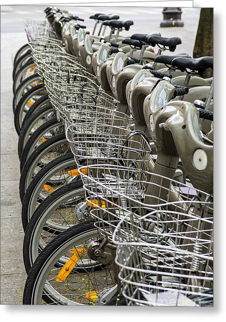 Row Of Bicycles Greeting Card by Carlos Caetano