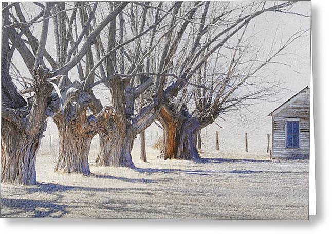 Monte Vista Greeting Cards - Row Of Cottonwoods With Shed And Truck Greeting Card by R christopher Vest