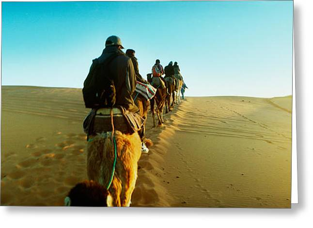 Sahara Sunlight Greeting Cards - Row Of People Riding Camels Greeting Card by Panoramic Images
