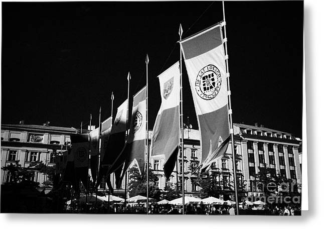 Polish City Greeting Cards - Row Of Red And White 750 Years Celebration Banners In Rynek Glowny Town Square Krakow Greeting Card by Joe Fox