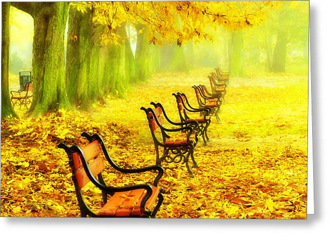 Row of red benches in the park Greeting Card by Jaroslaw Grudzinski
