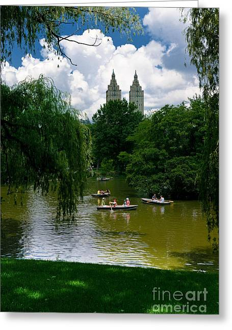 Rowing Greeting Cards - Rowboats Central Park New York Greeting Card by Amy Cicconi