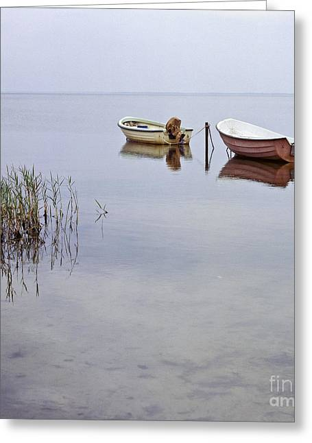 Rowboats On Nonnensee Greeting Card by Heiko Koehrer-Wagner