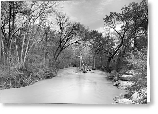 Black And White Nature Landscapes Greeting Cards - Rowlett Creek Greeting Card by Darryl Dalton